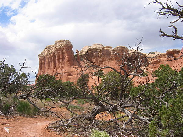 Along Tapestry Arch Trail