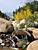 Alluvial Fan Waterfall / Fall Colors